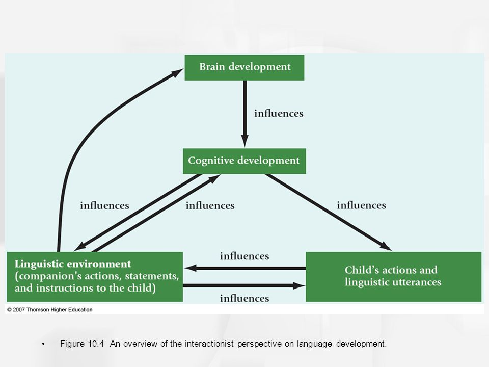 Chapter 10 development of language and communication skills ppt 14 figure 104 an overview of the interactionist perspective on language development ccuart Choice Image