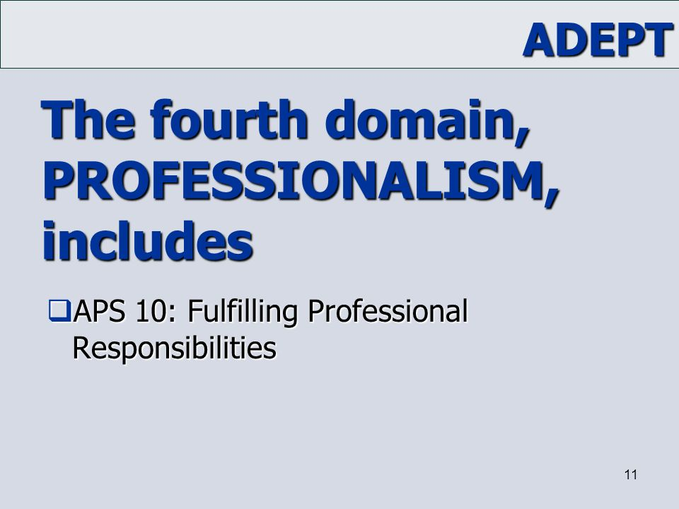 The fourth domain, PROFESSIONALISM, includes