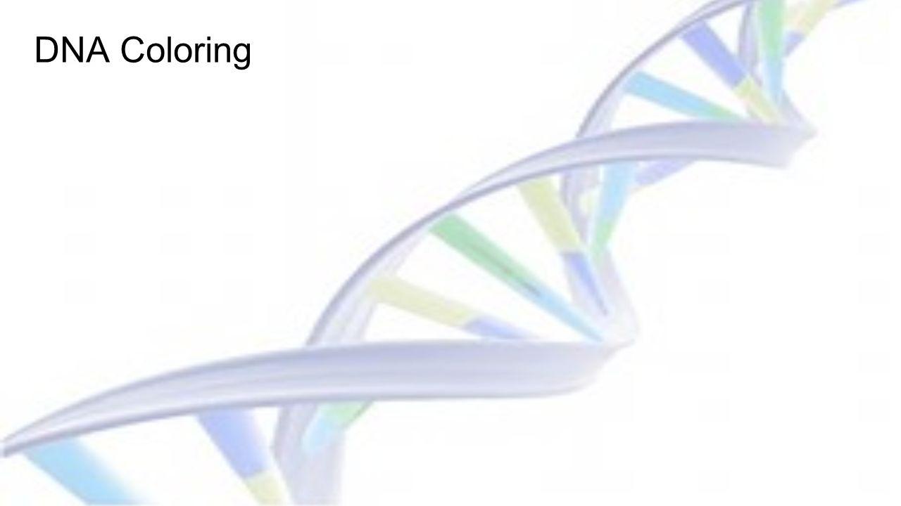 DNA \