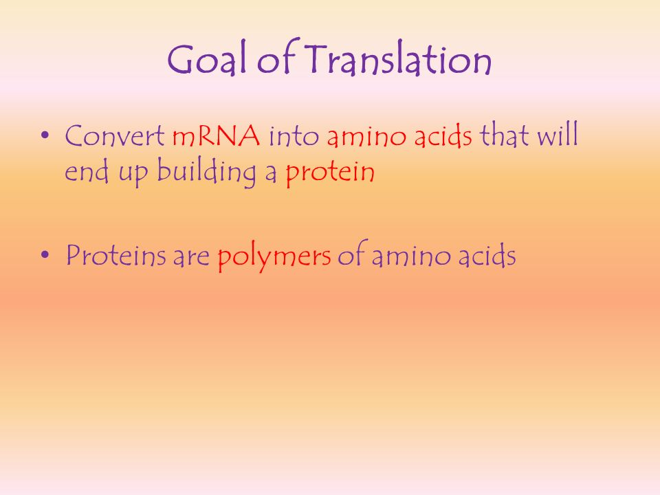 Goal of Translation Convert mRNA into amino acids that will end up building a protein.