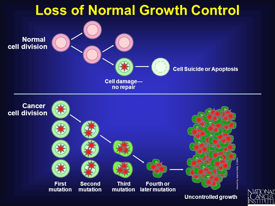 Loss of Normal Growth Control