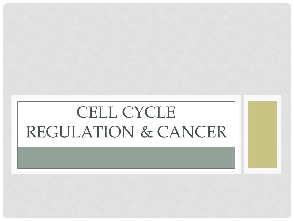 Cell Cycle Regulation & Cancer
