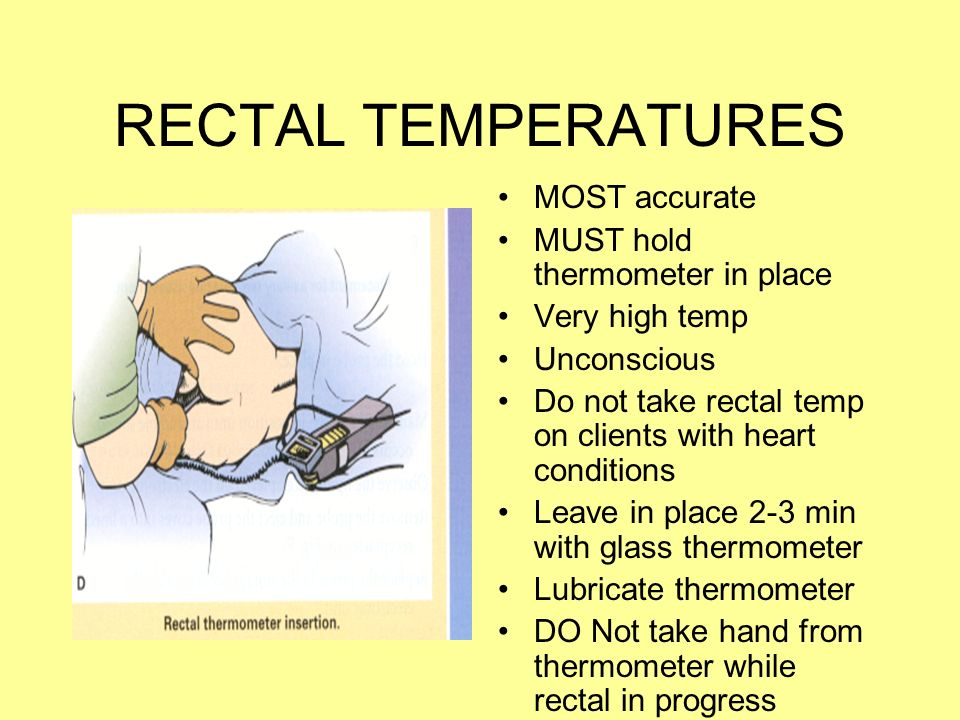 rectal temperature adult