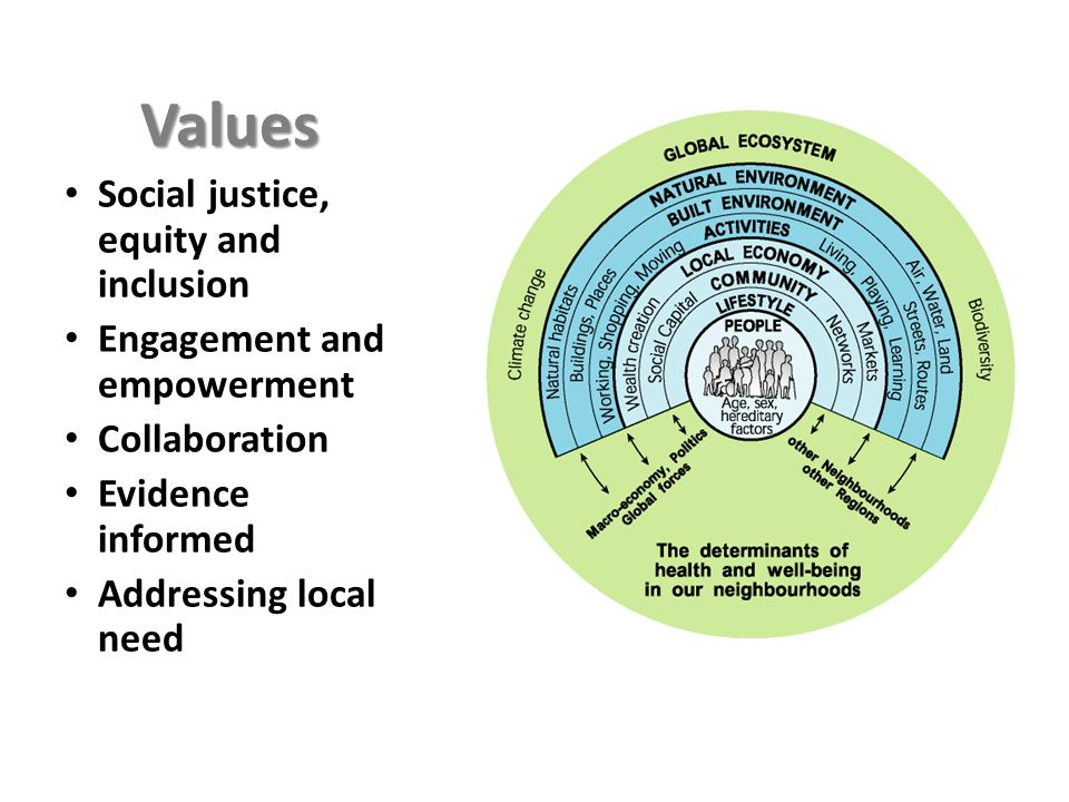 Values Social justice, equity and inclusion Engagement and empowerment
