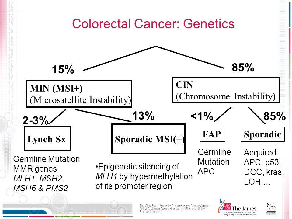 the genetics of cancer pdf