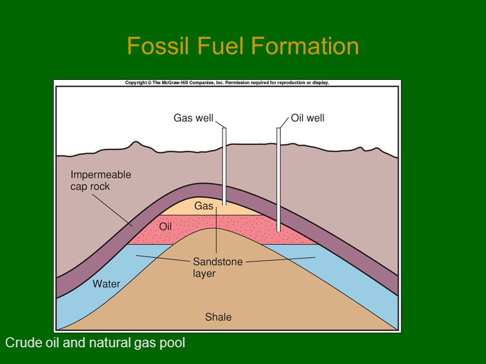 Oil Or Natural Gas Originated From The
