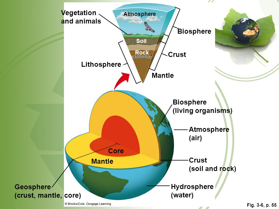 Vegetation and animals Biosphere Crust Lithosphere Mantle Biosphere