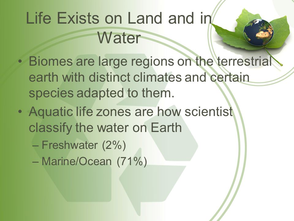Life Exists on Land and in Water