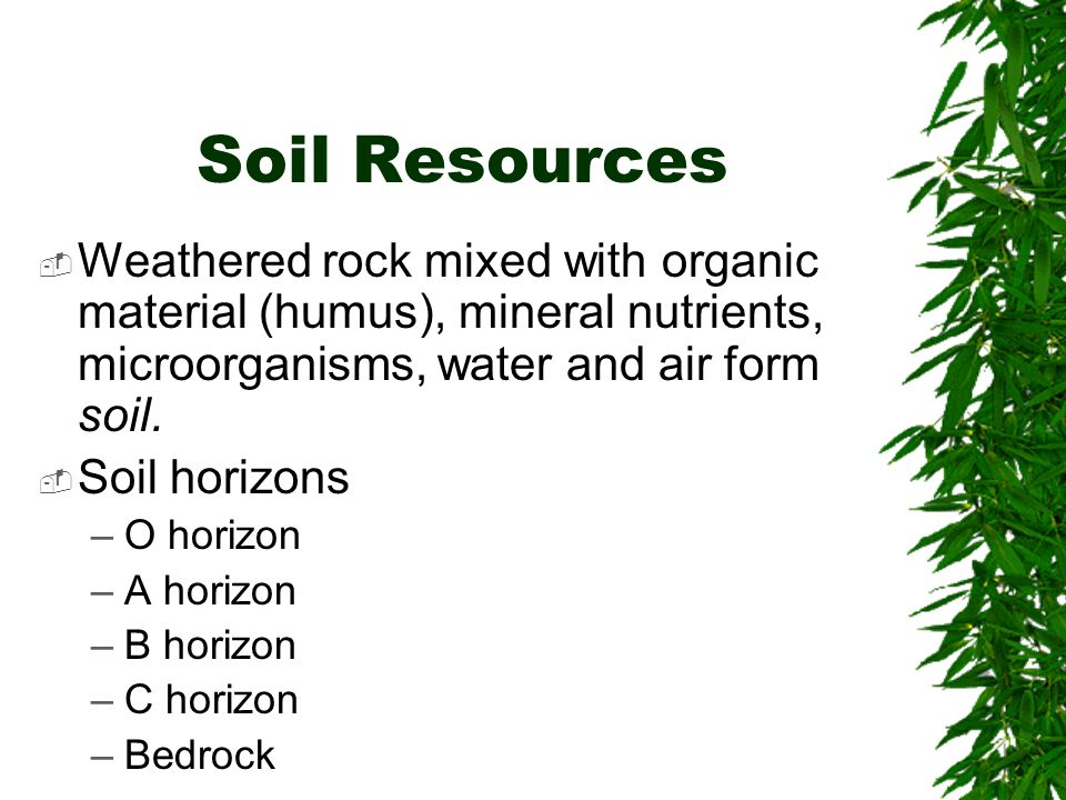 Ecosystems and soils chapter 3 brooks cole publishing for What is soil resources