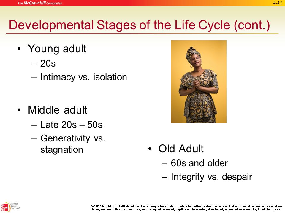 Phrase interesting. Adult developmental stages