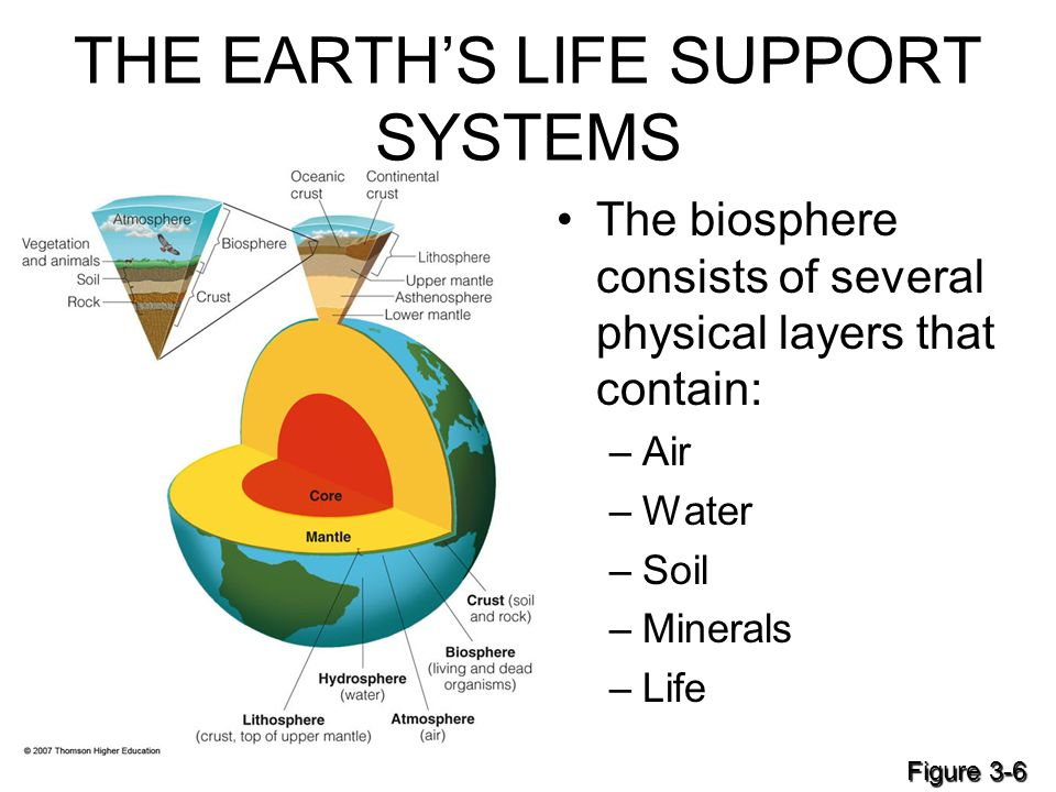 Ecosystems What Are They And How Do They Work Ppt Download