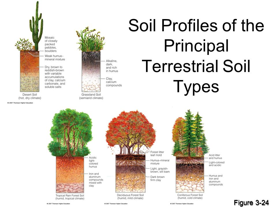 Download kinetic theory irreversible processes for Different types of soil for kids