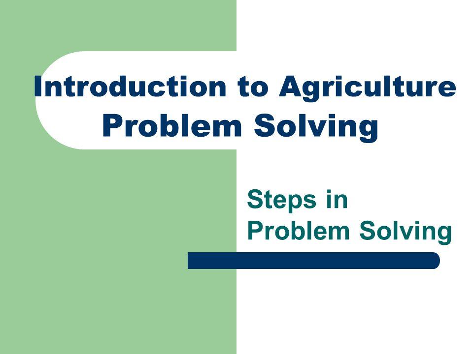 Future Problem Solving Steps