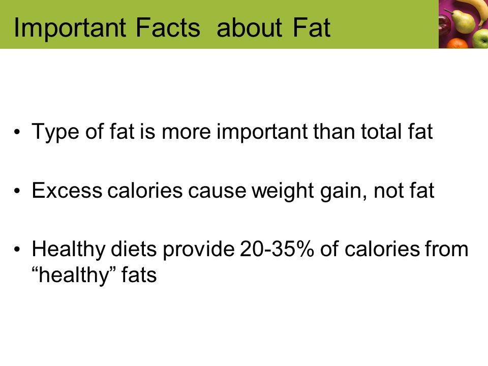 Important Facts about Fat