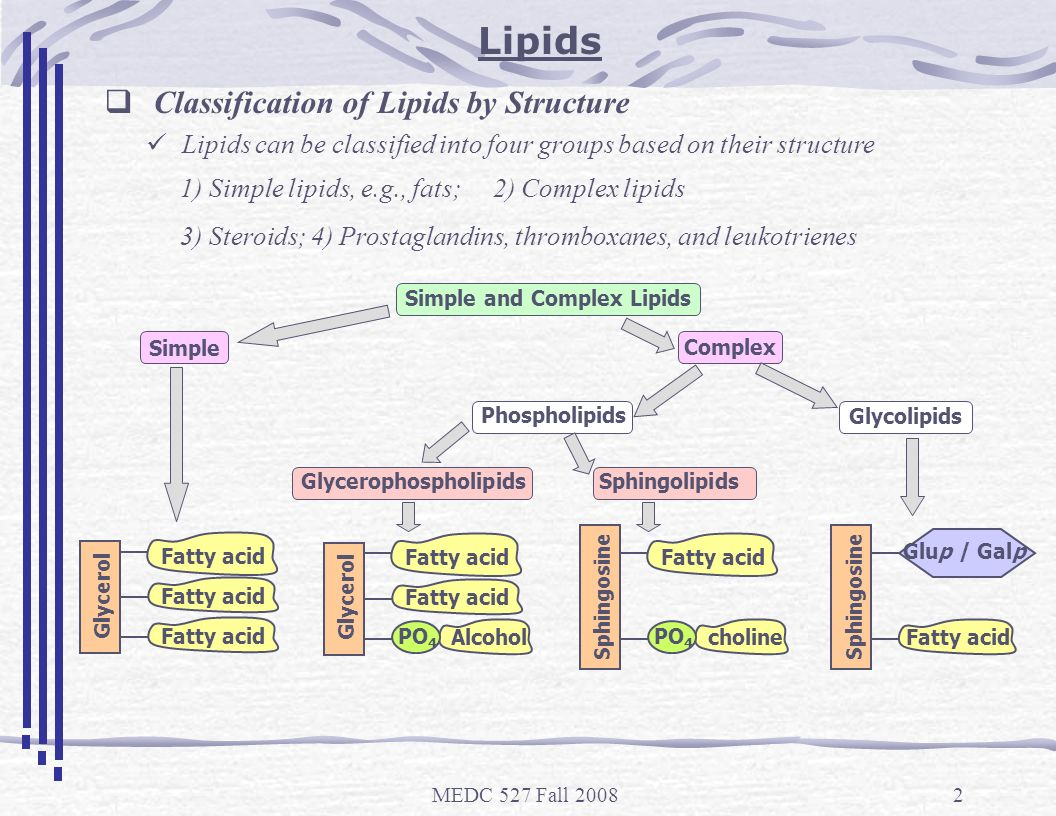 function of lipids Structure and function of lipids lipids are organic molecules found in all living organism some lipids are hydrophobic molecules (triglycerides, sterol esters) while others are hydrophilic molecules (phospholipids, short chain fatty acids).