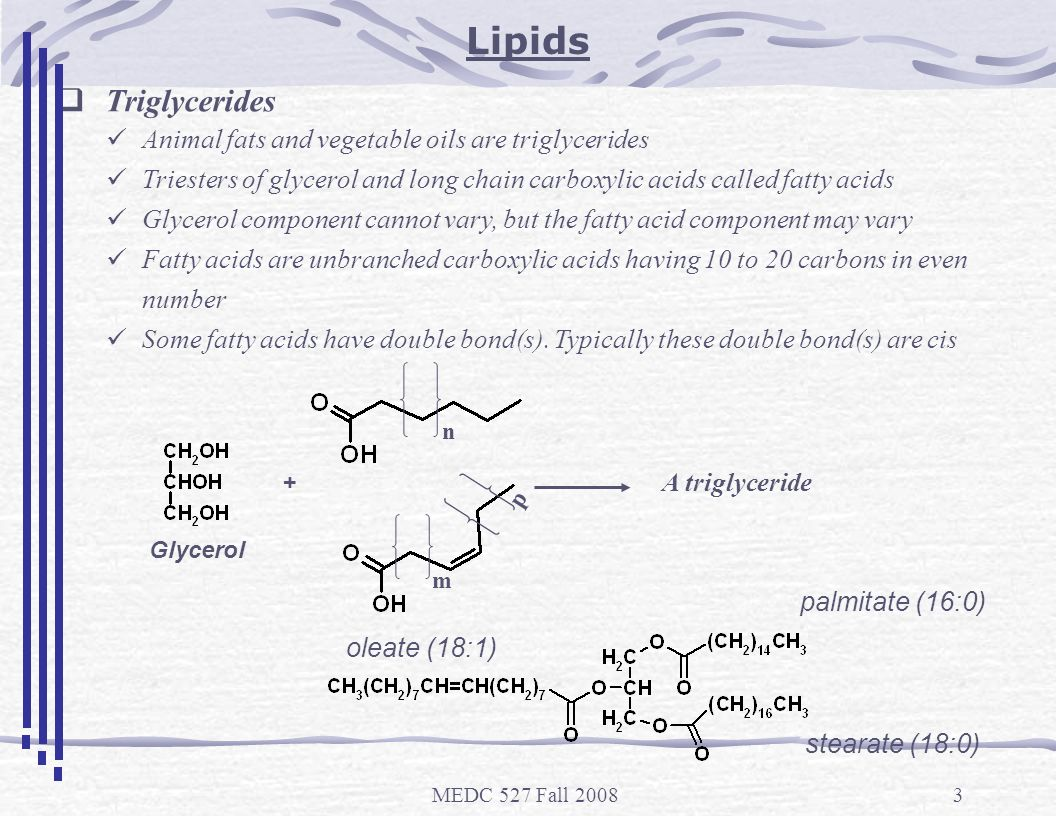 Lipids Triglycerides Animal fats and vegetable oils are triglycerides