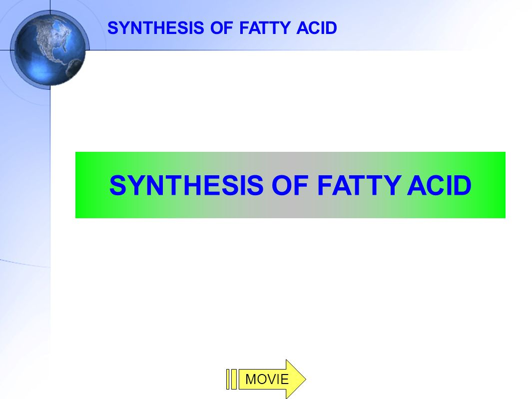 reactions of fatty acids pdf