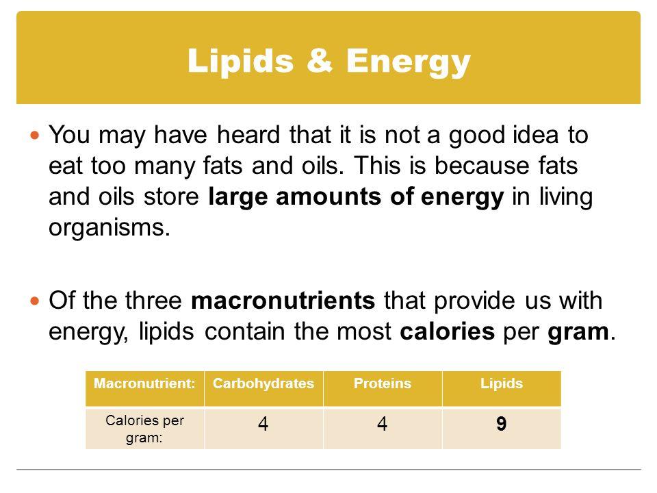 Lipids Mr. Chapman Biology ppt video online download