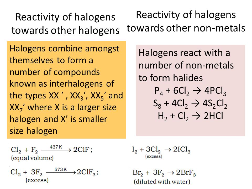 metals and halogens reactions Group 7, the halogens  you remember year 8 when you learnt about metals  as reducing power increases down the group this trend can be shown via reactions with.