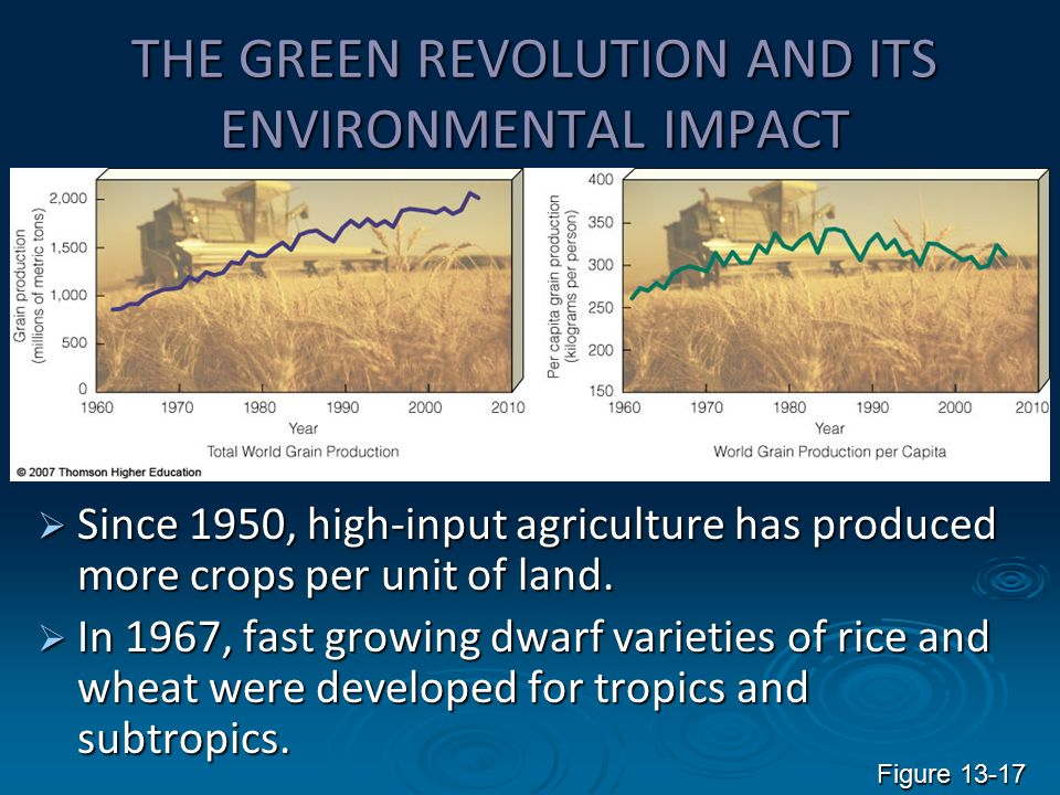 impact of green revolution The green revolution of the late 20th century saw advances in high-yield  agriculture which scientists are only now realizing had a massive.