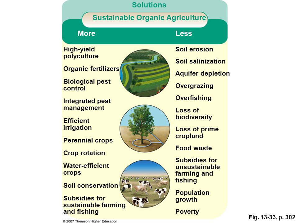 Food soil conservation and pest management ppt video for Organic soil solutions