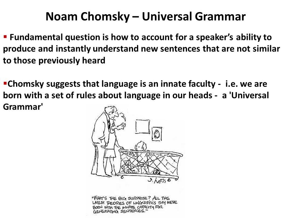 innate ability on universal grammar essay Comparative essay  krashen and chomsky's and he proposed universal grammar language and they expand this innate ability.