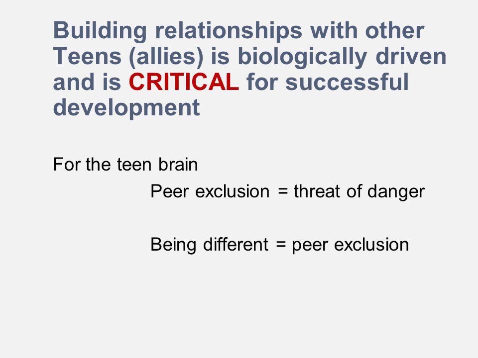 Teen styles peer relationships