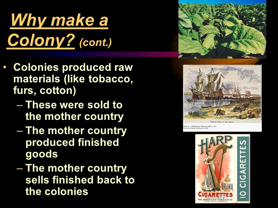 Why make a Colony (cont.)