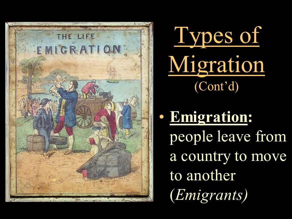 Types of Migration (Cont'd)