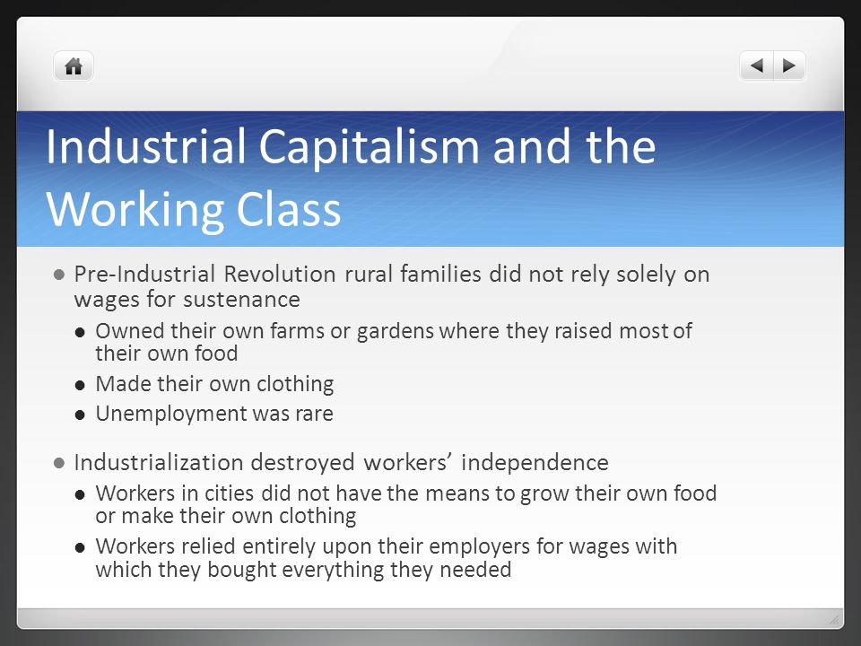 Industrial Capitalism and the Working Class