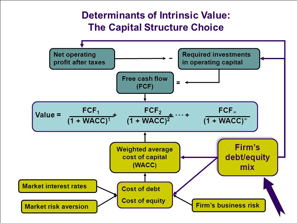 Capital Structure of a Firm: Meaning and Its Determinants | Financial Management