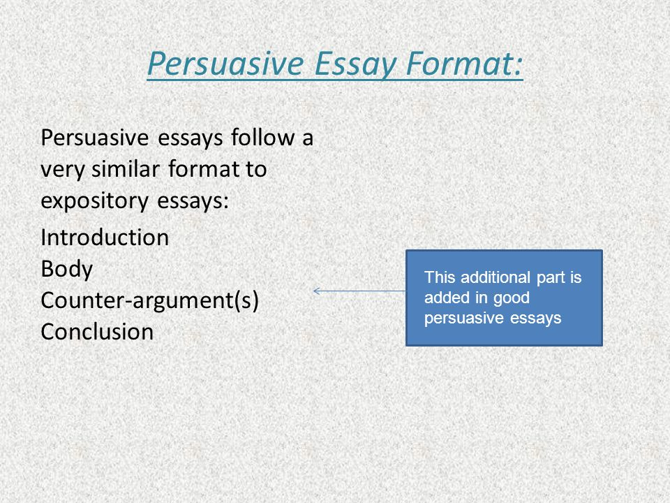 Sample persuasive essay with counter argument