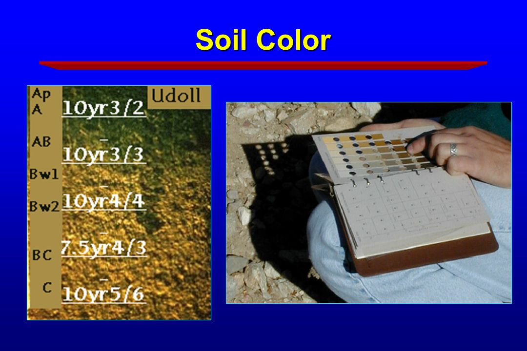 Soil science for master gardeners ppt download for Soil yellow color