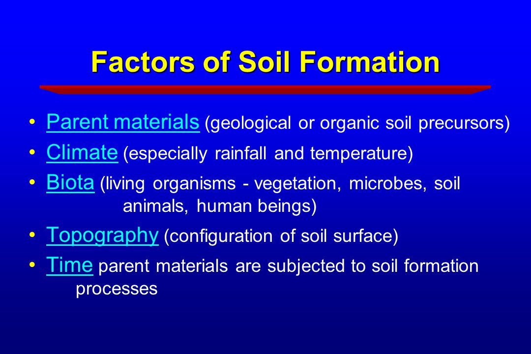 Soil science for master gardeners ppt download for Soil forming factors