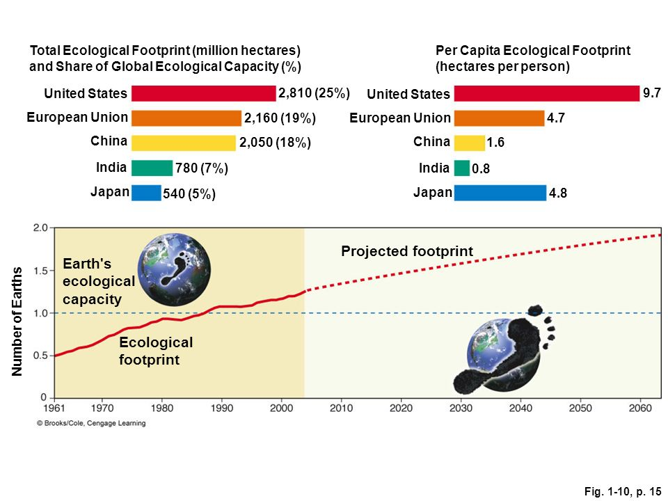 Projected footprint Earth s ecological capacity Ecological footprint