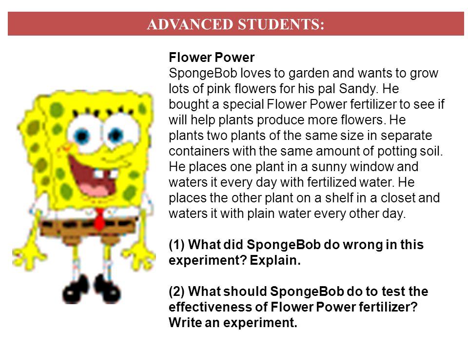 Scientific Method Worksheet Spongebob Part 2 David Dror – Spongebob Scientific Method Worksheet Answers