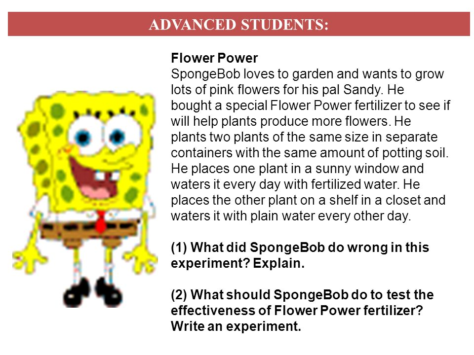 ADVANCED STUDENTS: Flower Power