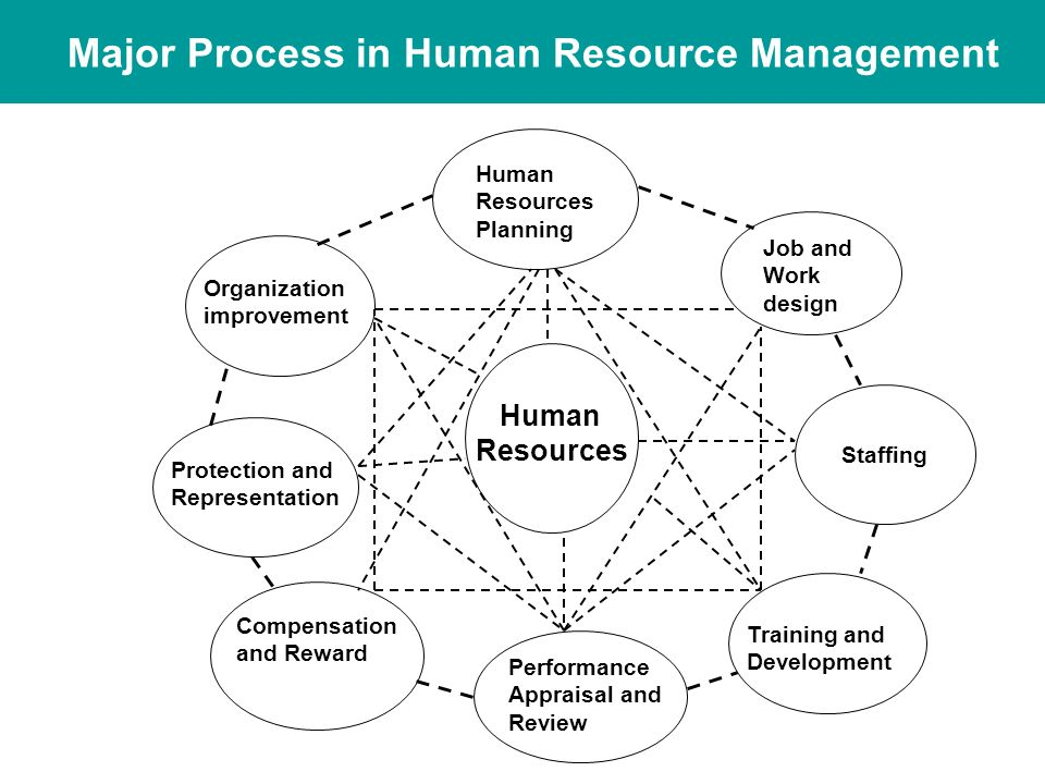 Human Resource Management  Ppt Video Online Download. High School For Art And Business. Best Bank For Teenagers Building Data Centers. Windows Forensic Analysis Business Credit App. Merchant Warehouse Gateway Cpa Review Courses. Condo Insurance Policy 2 Year Nursing Program. Vendor Management Compliance. Dish Network Salt Lake City Ut. Christmas Tree Clip Art Free Apply To Pitt