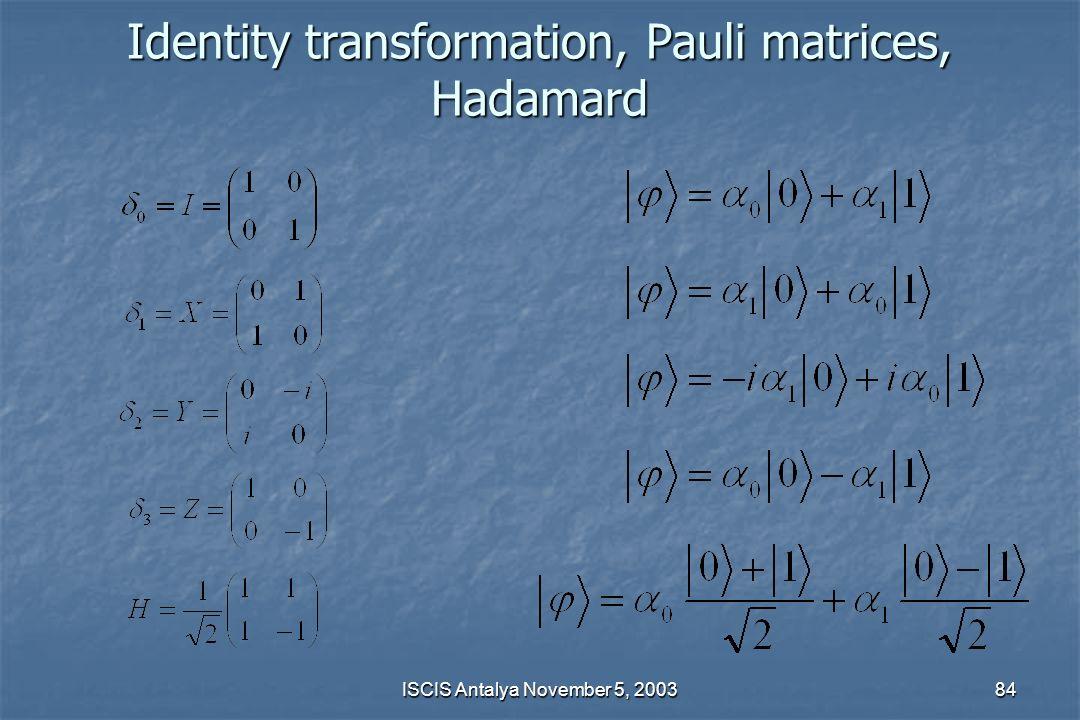 Identity transformation, Pauli matrices, Hadamard