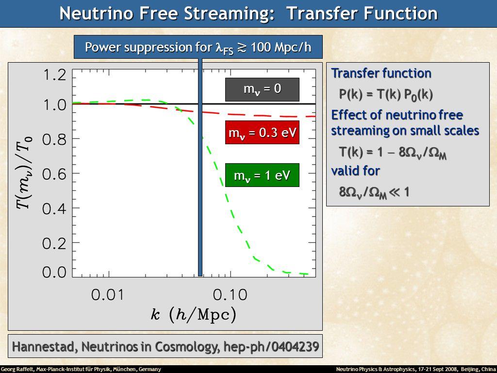 Neutrino Free Streaming: Transfer Function