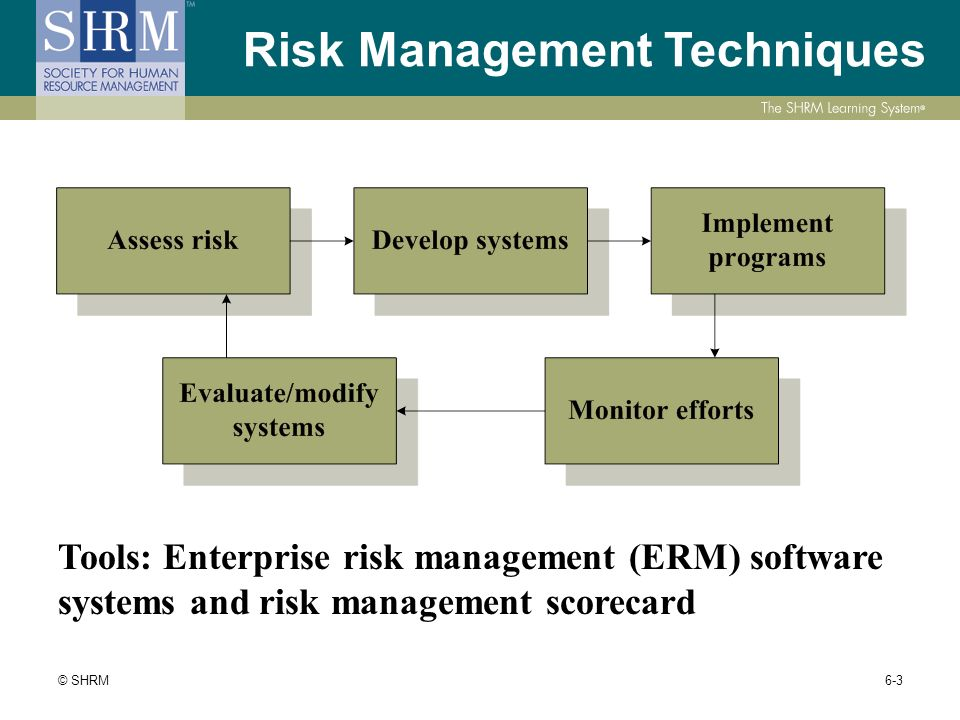 risk management tools and techniques pdf