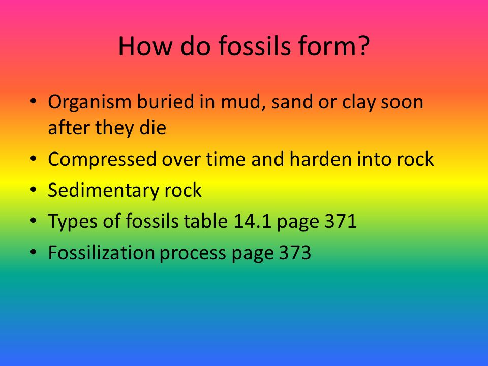 How Does Carbon Hookup Provide The Age Of A Fossil