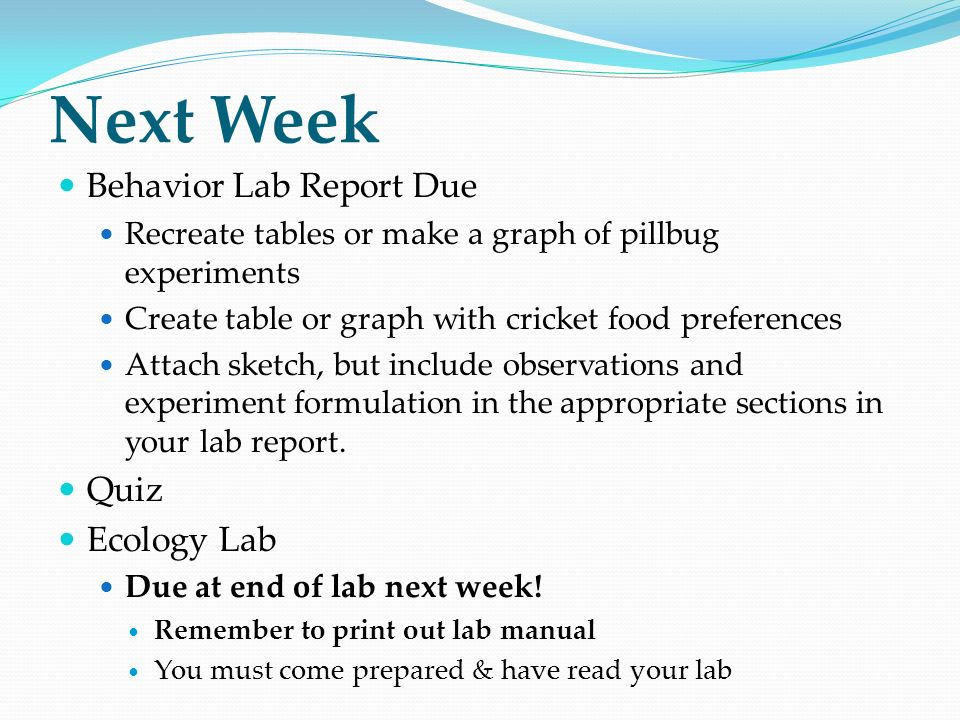 animal behavior archer fish and acorn woodpeckers ppt video  next week behavior lab report due quiz ecology lab