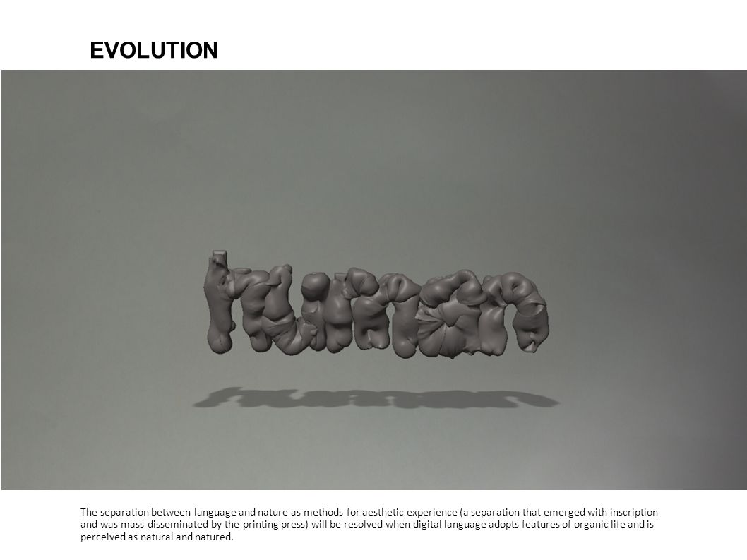 EVOLUTIONThe separation between language and nature as methods for aesthetic experience (a separation that emerged with inscription.
