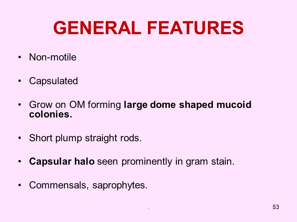 GENERAL FEATURES Non-motile Capsulated