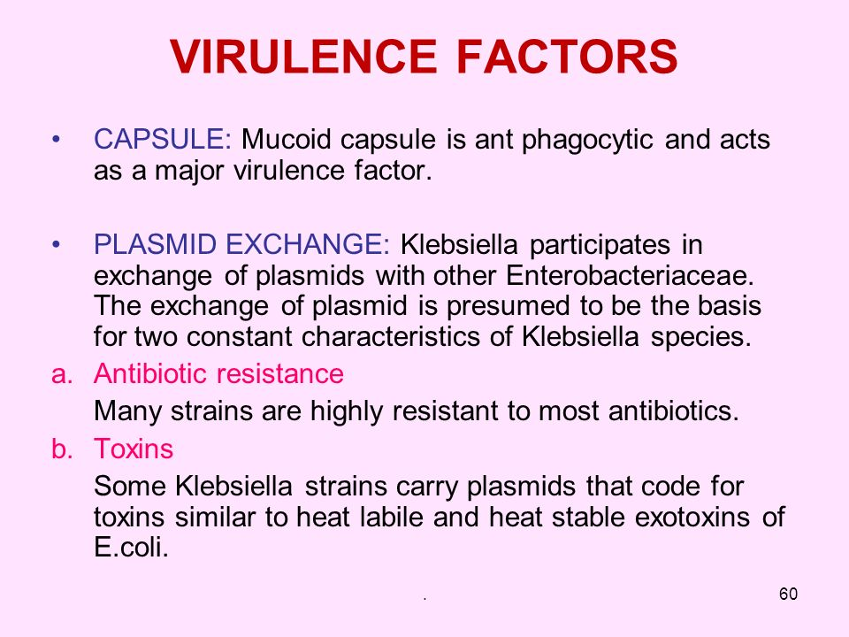 VIRULENCE FACTORS CAPSULE: Mucoid capsule is ant phagocytic and acts as a major virulence factor.