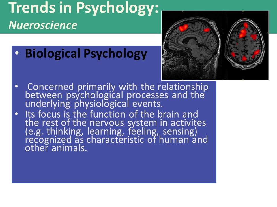 what is the relationship between psychology and other science