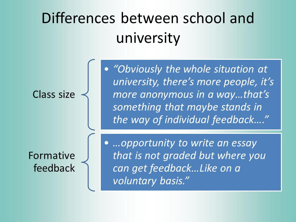 differences between school and university essay service