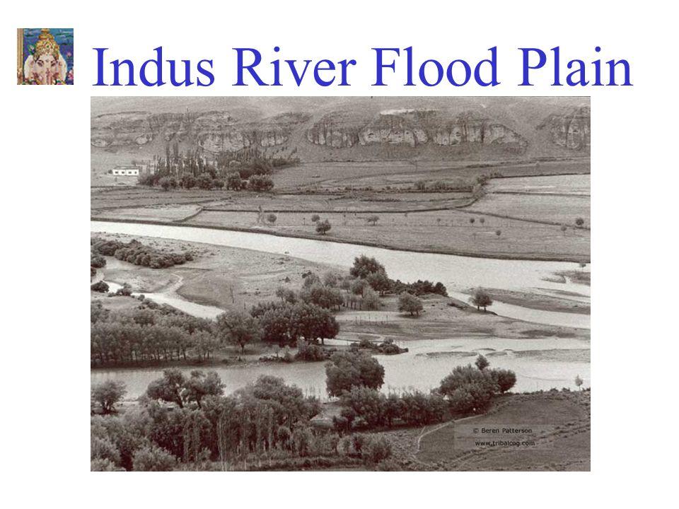 Indus River Flood Plain