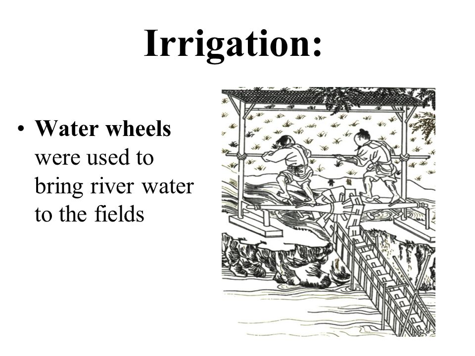 Irrigation: Water wheels were used to bring river water to the fields
